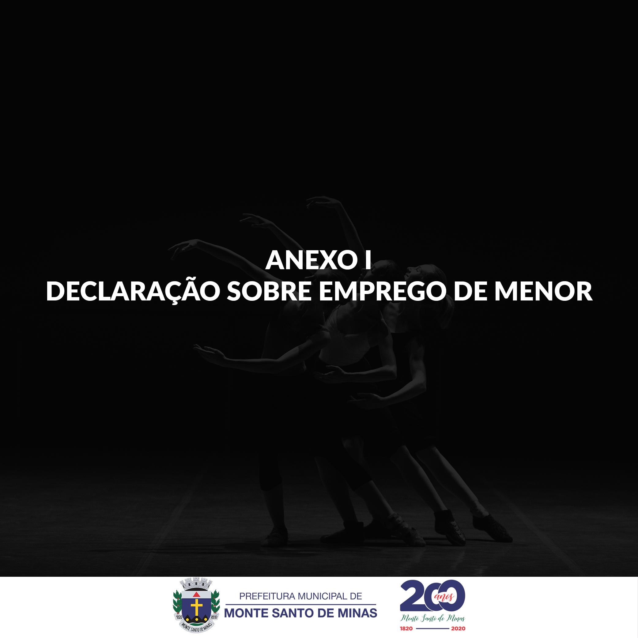 ANEXO I – DECLARAÇÃO SOBRE EMPREGO DE MENOR