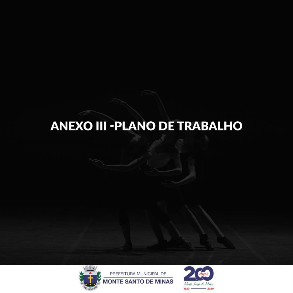 ANEXO III – PLANO DE TRABALHO